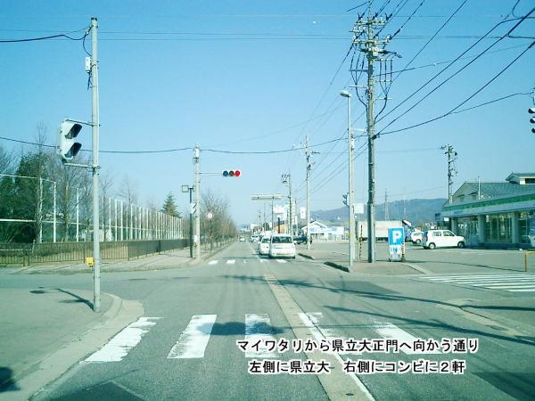 マイワタリ 福井市内眺望 (3)